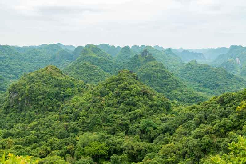 parque nacional de cat ba vietnam