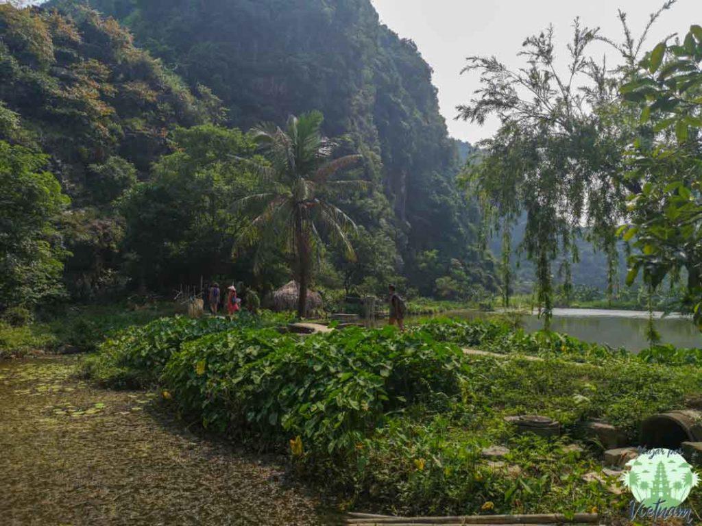 pagoda bich dong, vietnam