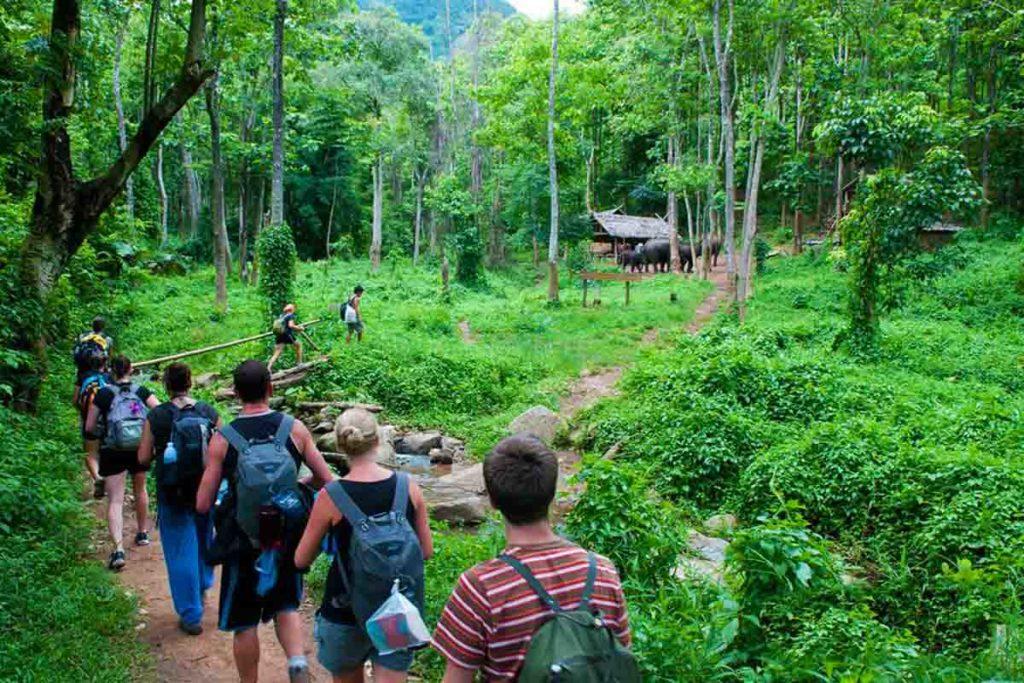 senderismo en el parque nacional de cuc phuong