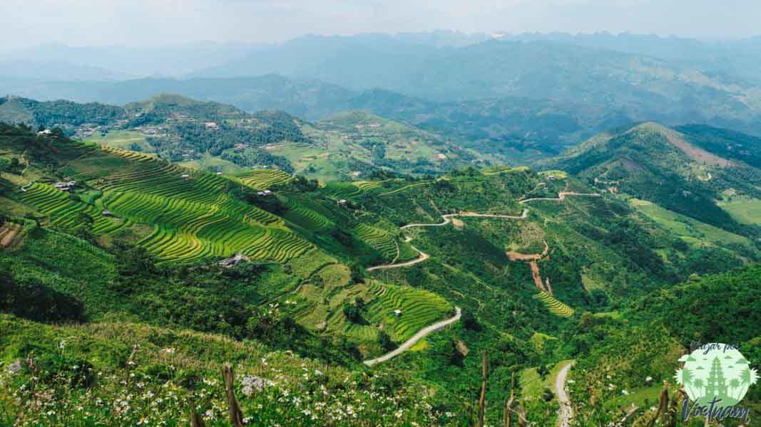 terrazas de arroz en du gia, ha giang loop